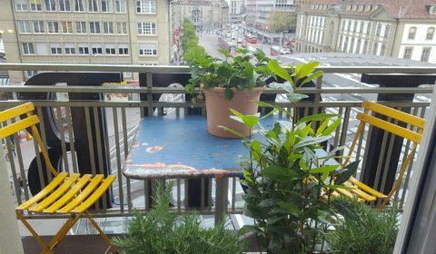 Energy Kitchen Dachgarten im 4. Stock