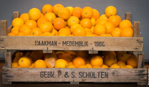 Energy Kitchen Orangen